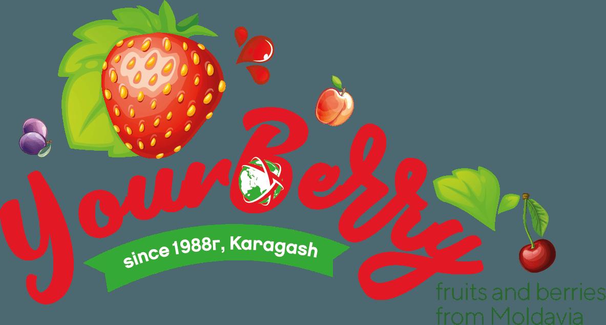 Logo YourBerry